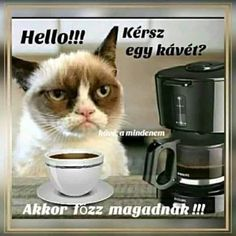 Drip Coffee Maker, Coffee Maker Machine