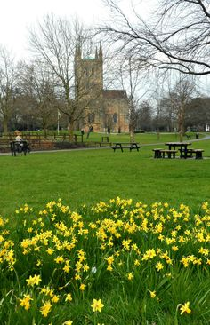 Daffodils and a view of Pershore Abbey. In Explore at 221, March 6th, 2016. https://www.picturedashboard.com