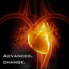 Discover what you need to know about mitral valve prolapse, including Dr. Sinatra's top recommendations for treating mitral valve prolapse symptoms naturally. Prolapso Da Válvula Mitral, Mitral Valve Prolapse, Heart Facts, Matt Chandler, Heart Valves, Reverse Aging, Heart Muscle, Medical Facts, Medical Quotes
