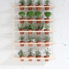 DIY Vertical Garden by homemademodern: Great for herbs! #Garden #Vertical #Hanging