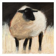 Suffolk Sheep by Lois Dahl, Bellingham