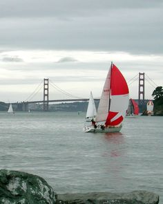 Sailing off Tiburon shoreline