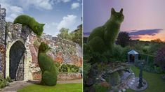 Richard Saunders once saw an ornamental shrub and was struck by how its shape resembled his beloved pet cat while asleep. Now the images he creates replacing real-life bushes with his pet's feline form have reached millions of people around the globe.