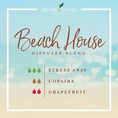Discover the large variety of products for your healthy home and body that Young Living sells. Essential Oils Guide, Doterra Essential Oils, Young Living Essential Oils, Young Living Copaiba, Young Living Valor, Yl Oils, Young Living Oils, Makeup Tricks, Qi Gong