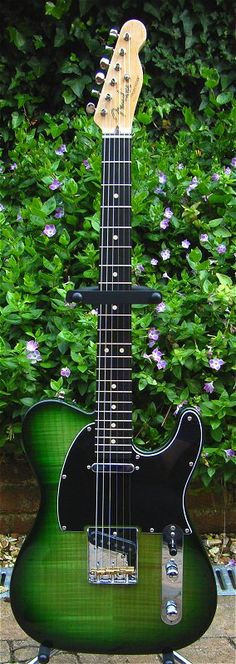 Using greenery and flowers as a professional photography session backdrop is exemplified in the composition of this gorgeous green Fender Telecaster Greenburst guitar. - DdO:) - see http://www.pinterest.com/DianaDeeOsborne/instruments-for-joy/ for more guitars and basses and other stringed musical instruments :)