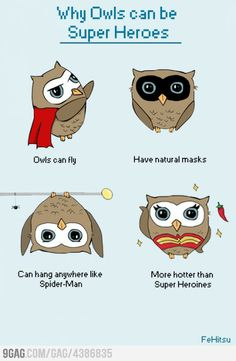Additionally they can see in the dark and twist their head 360°. Owls = Superheroes