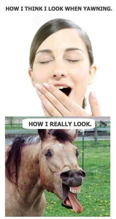 How i think i look, memes, memes funny, memes humor, hilarious memes .For more funny jokes and hilarious photos visit www.: hilarious It's been a while- memes All Meme, Crazy Funny Memes, Really Funny Memes, Stupid Memes, Funny Relatable Memes, Haha Funny, Hilarious Memes, Funny Stuff, Sarcastic Memes