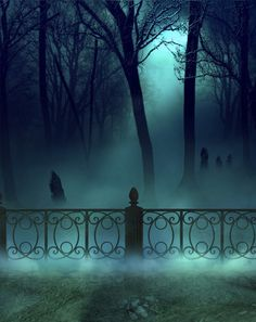 "owls-magicmoon-garden:  "" fens Cementery premade bg by starscoldnight by StarsColdNight  """