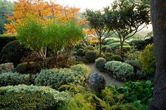 Landscape: a variation of plants used to create this breathtaking setting.