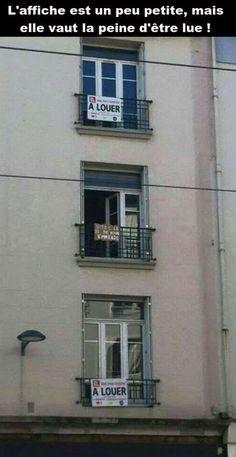 Ces 2 appartements sont � louer, c'est louche