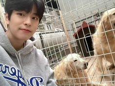 Stray Kids Seungmin, Be My Baby, Crazy Kids, Lee Know, South Korean Boy Band, Pretty Boys, Boy Groups, Boy Bands, Puppies