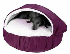 Snoozer Cozy Cave - a cozy nesting pet bed for breeds that like to burrow. Ideal for small dogs and cats.