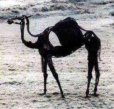 Scrap metal #sculpture by #sculptor Helen Denerley titled: 'Ship of the Desert (Objects Trouvees Camel statues)'. #HelenDenerley