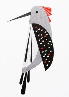 woodpecker, created by Pui, London based Graphic Designer.