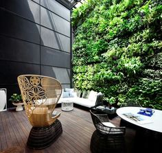 green wall in courtyard