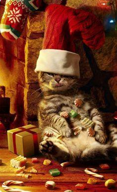 """♡☆ """"Just waiting for Santa!"""" ☆♡"""