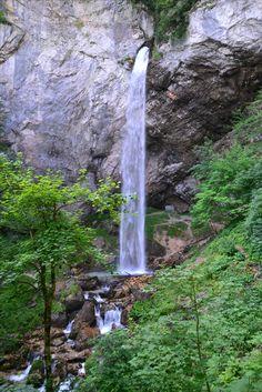 Visit Austria, Vienna Austria, Central Europe, Salzburg, Alps, Outdoor Structures, Vacation, Tea, Plants