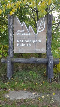 Nationalpark Hainich Unesco Weltnaturerbe