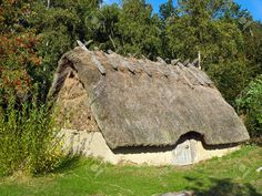 Traditional old Viking Age house hut in a village (viking)