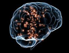Verstand, Emotion und Körper: Gehirn räumt im Schlaf auf Schwächung von…