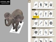 animal 4d+ cards download - Google Tìm kiếm Web Animal, Animal Facts, Giraffe, Elephant, Mobile Application Design, Animal Adaptations, Human Body Parts, Alphabet Cards, Circle Of Life