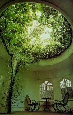 Tree house from the inside