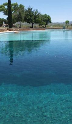 The world's largest spring-fed pool is an oasis in the Texas desert - Balmorhea State Park, Balmorhea, TX