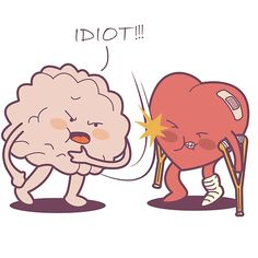 Idiot! I Told You So!
