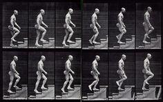 Stairs, Muybridge