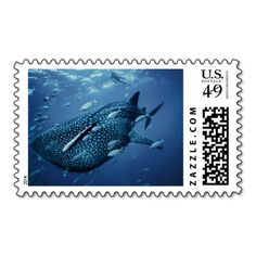 Add stamps to all your different types of stationery! Find rubber stamps and self-inking stamps at Zazzle today! Refurbished Pc, Self Inking Stamps, Whale, Stationery, Australia, Store, Animals, Button, Website