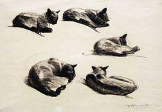 Edward Hopper - Cat Studies.