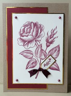 Honey Doo Crafts Acrylic Stamps - Sample Gallery Honey Doo Crafts, Birthday Wishes, Birthday Cards, Card Making Inspiration, Flower Cards, Stampin Up Cards, Cardmaking, Craft Stamps, Projects To Try