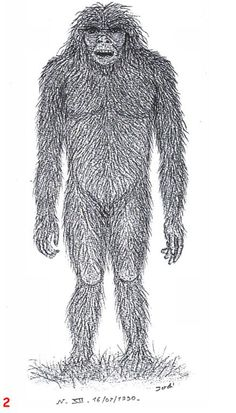 The Barmanou (or Barma-nu) is a bipedal primate cryptid supposedly living in the mountainous region of Afghanistan and Pakistan. The Barmanu appears in the folklore of the Northern Regions of Pakistan and depending on where the stories come from it tends to be either described as an ape or a wild man. The Barmanu is supposed to possess both human and apelike characteristics and is said to abduct women and attempt mating with them. It is also reported to wear animal skins upon its back and…