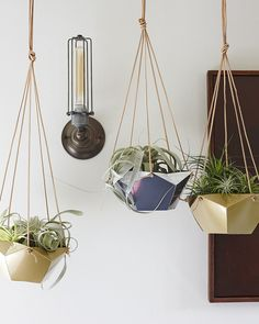 W&D For Target DIY: Hanging Air Plant Containers
