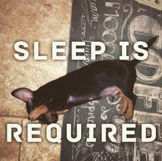The body needs rest....