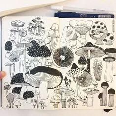 hee_cookingdiary instagram - Day 10, Mushroom I love mushrooms!