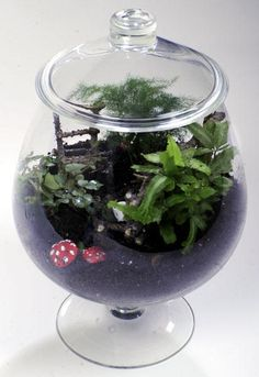 Homemade gift idea: how I made a fairy garden terrarium