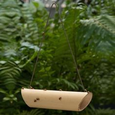 Ladybugs can eat dozens of aphids a day and now you can easily attract these beneficial bugs to your yard and garden with this cool Bamboo Ladybug Feeder. Just hang this natural bamboo feeder, bait it by adding a few raisins and they will come.  Click on the picture for instruction for making your own.