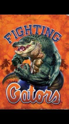 Gators Don't like Haters 🥑 Fla Gators, Florida Gators Logo, Gator Logo, Florida Gators Football, Gator Football, Pittsburgh Steelers, Dallas Cowboys, Best Football Team, Football Memes