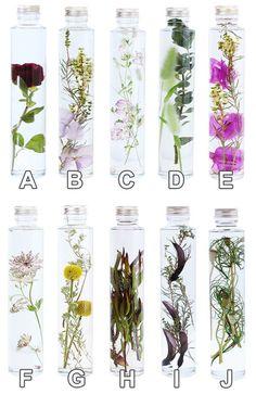 Voss Bottle, Water Bottle, Flower Bottle, Floating Flowers, Water Tap, Nature Crafts, Packaging Design, Herbalism, Glass Vase