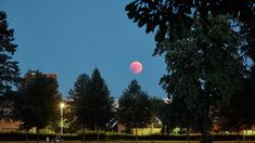 Shooting the Blood Moon [Moon eclipse July Moon Moon, Red Moon, Travel Inspiration, Blood