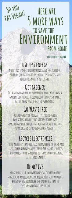 http://onegr.pl/1xSbaIF #vegan #vegetarian #save #environment #green #tips