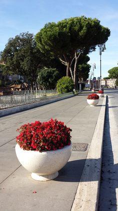 PRIMAVERA planters in Roma, via dei fori Imperiali, Piazza Venezia, Colosseo #Bellitalia #marble street furniture - arredo urbano - mobiliario urbano - mobilier urbain