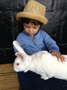 Belmont Farm, Mill Hill, London: A spring visit to feed the lambs, see the rabbits and alpacas, and feed the goats and chickens.