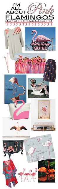 FLAMINGOS~I'm all about Pink flamingos