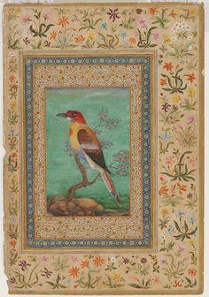 indian mughal birds - Google Search