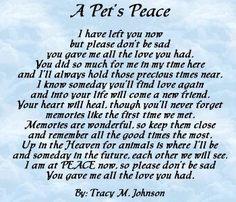 A Pet's Peace