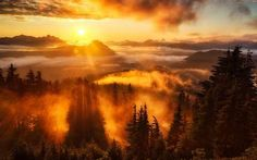 Beautiful cloudscape at sunset. // Up above the clouds at feet - sunset at Evergreen Mountain Lookout, Washington (by Michael Matti on Beautiful Sunset, Beautiful World, Beautiful Places, Stunningly Beautiful, Amazing Places, Beautiful Gif, Beautiful Morning, All Nature, Amazing Nature