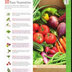 Easy vegetables to grow :)