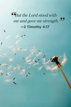 30 Bible Quotes That Will Change Your Perspective on Life - Jesus Quote - Christian Quote - 30 Inspirational Bible Quotes About Life Scripture Verses of the Day The post 30 Bible Quotes That Will Change Your Perspective on Life appeared first on Gag Dad. Inspirational Bible Quotes, Biblical Quotes, Jesus Quotes, Faith Quotes Bible, Quotes From The Bible, Inspiring Bible Verses, Inspirational Thoughts, Religious Quotes Strength, Gods Blessings Quotes
